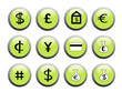 Green financial icon buttons