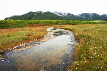 Creek on Kamchatka