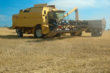 Harvester working