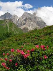 scenario alpino