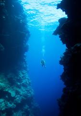 Diver swimming between underwater cliffs
