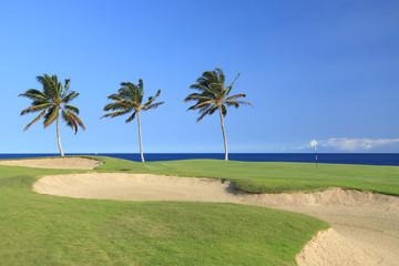 Hawaii Golf Course on Kona Island