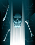 Stylized vector skull and bones xray or hologram poster