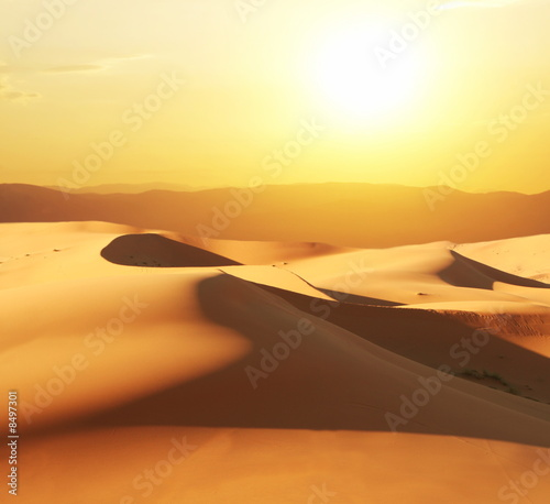 Leinwandbild Motiv Dunes