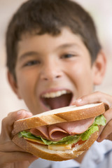 Young boy eating sandwich