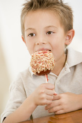 Young boy eating candy apple