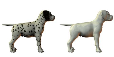 dalmation dog 3d model