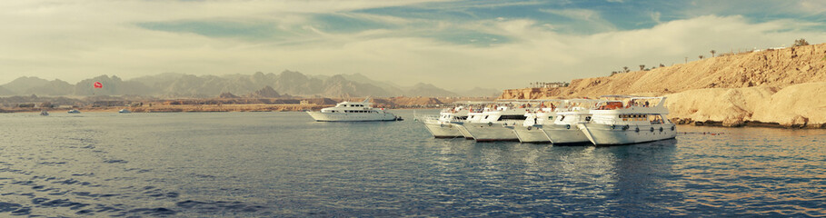 Group of white yachts panorama