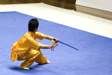 Chinese Martial Arts (Wushu)