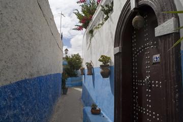 rue ombragée de Rabat, Maroc
