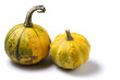 decorative squashes isolated