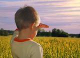 happy young boy looking horizon in sundown poster
