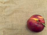 Single nectarine at the brown linen poster