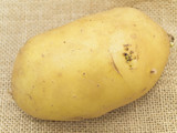 Close up single potato at the brown linen poster