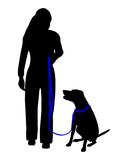 Hundetraining (Obedience), Befehl Sitz bei Fuß! poster
