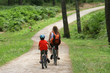 balade en vélo en forêt