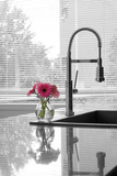 thoroughly modern kitchen counter, sink, tap & flowers