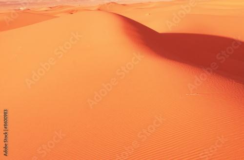 Leinwanddruck Bild Dune in desert