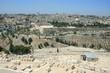 vue de jérusalem depuis le mont des oliviers
