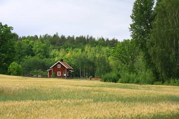schwedische impressionen