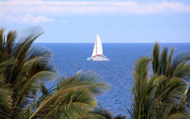Hawaii Sails