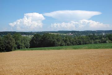 Ambosswolke über Getreidefeld