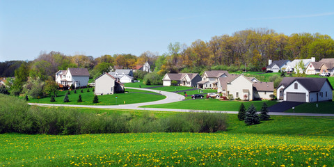 Suburban Neighborhood in the Spring