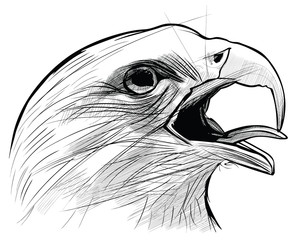 Ink drawing of the famous eagle of Langkawi island