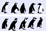 penguin motif , vector collection for designers poster