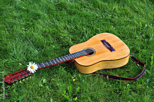 12-string old guitar on a green lawn