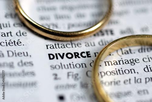 Leinwandbild Motiv Le divorce
