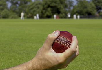 Cricket Ball Caught