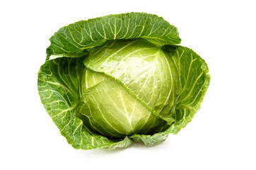 Cabbage isolated on a whiteground.