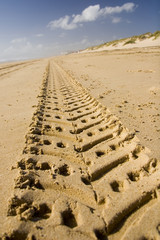 sand track adventure 01