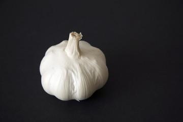 Garlic bulb on black background