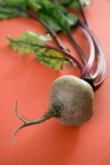 Beet bulb with greens
