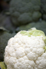 Cauliflower head *** Local Caption *** Fruits and vegetables fresh from the farm