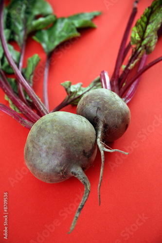 Beet bulbs with greens