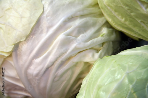 Green cabbage heads