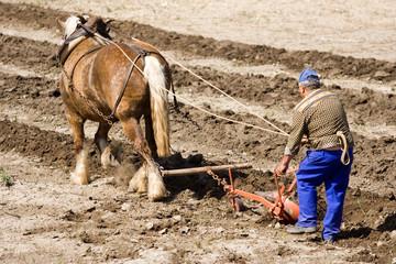 Agriculture et métier : paysan et cheval de trait au labours