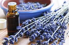"Постер, картина, фотообои ""Lavender herb and essential oil"""