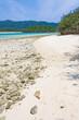 Japanese coral beach