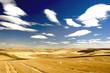 Leinwandbild Motiv Checkered landscape of wheat, barley, lentil farm land