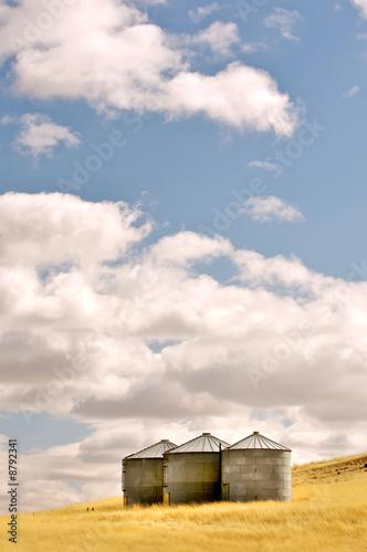 Leinwandbild Motiv Three silos in a wheat field
