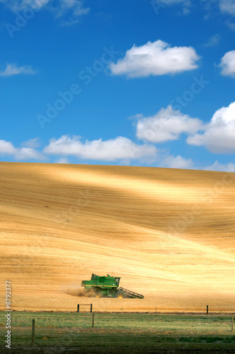 Leinwandbild Motiv Combine Harvesting Wheat
