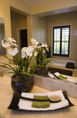 Decor in a luxury home bathroom.