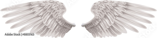 canvas print picture White Wings