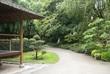 allée d'un jardin de thème oriental