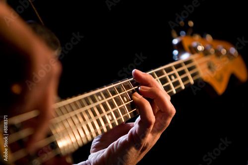 Bassist - 8818371