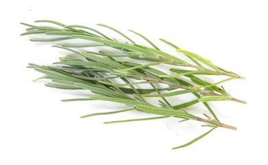 Rosemary fresh leaves